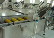 蔬菜清洗机具备作用几种清洗类型