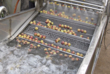 气泡式蔬菜清洗机优点主要构造